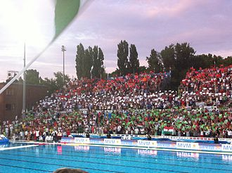 Hungary men's national water polo team - supporters celebrate the Hungarian team