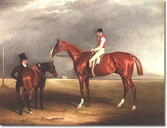 Velocipede (horse) - Velocipede by John Ferneley