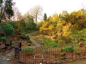 Victoria Park, Glasgow - The grove at Victoria Park