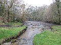 View from Trenarth Bridge - geograph.org.uk - 370987.jpg