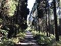 View near Aso Farm Land 4.jpg