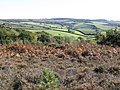 View towards Little Haldon - geograph.org.uk - 1533011.jpg