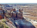 Viewing Petrified Forest from trail.jpg