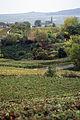 Village de Chigny les Roses(51) Cl.J.Weber (23049478624).jpg