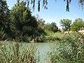 Vista del río Tajo.JPG