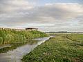Vogelkijkhut Lauwersmeer gebied 1.jpg