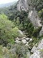 Vora el riu Glorieta a Mont-ral P1260703.jpg