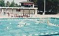 WG Water Polo.jpg