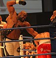 WKA World Championschips 2011 228 (cropped).JPG