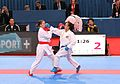 WKF-Karate-World-Championships 2012 Paris 170.JPG