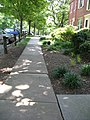 Walkway in Arlington Village.jpg