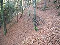 Wandern im November in Todtmoos - panoramio (16).jpg
