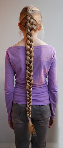 Braid Wikipedia