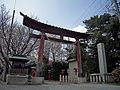 Washinomiya 001.jpg