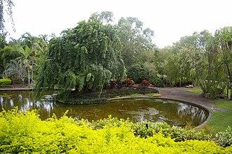 Jingili, Northern Territory - Water Gardens in Jingili