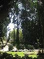 Weizmann's Grave IMG 2492.JPG