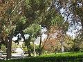 Weizmann Institute IMG 2430.JPG