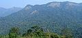Western Ghats Vegetation - View en route Kottiyoor to Mananthavady4.jpg