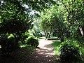 Whitestone Garden - geograph.org.uk - 455568.jpg