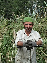 Wiktor Kotowski in wetlands.jpg