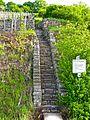Winzertreppe auf dem Pfaffenberg.jpg