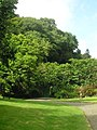 Wooded entrance to the Abbey's Walled Gardens - Hartland, August 2011 - panoramio.jpg