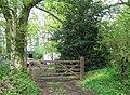 Woodland Gate - geograph.org.uk - 791628.jpg