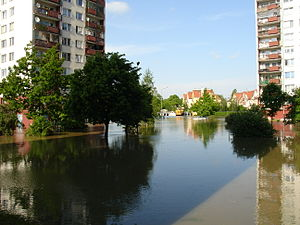 2010 Central European floods - Wrocław's flooded Kozanów district