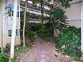 Wuchang Junior High School Garden 20100101b.jpg
