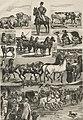 Wystawa koni i inwentarza, rys. Stanisław Masłowski.jpg