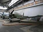 Yak -18.jpg