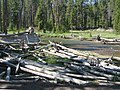 Yellowstone N.P., Driftwood, Gibbon River 9-2011 (6911254185).jpg