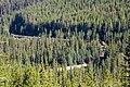 Yoho National Park (1954860892).jpg
