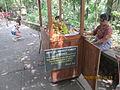 'Banana's for ubud monkeys'.JPG