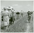 (African American cotton plantation workers, hired as day la... (3109740757).jpg