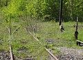 État de la section de Saint-Saulve à Blanc-Misseron de la ligne de Douai à Blanc-Misseron au 16 avril 2014 (122, gare d'Onnaing).JPG