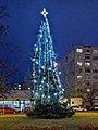 ČBu, Šumava, 2020 Christmas tree 01.jpg