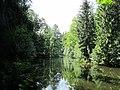 Большой пруд, вид с берега на остров.jpg