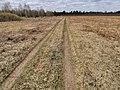 Дорога по полям 3.jpg