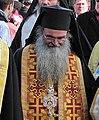 Епископ Давид (Перович) на 70-летней годовщине новосадской резни.JPG