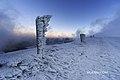 Зимовий вечір на Драгобраті.jpg