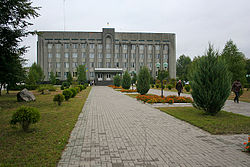 District administration in Kamin-Kashyrskyi