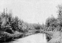 Левый приток реки Вычегды - Северная Кельтма.1890.Юлий Шокальский.jpg