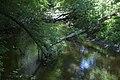 Нижня течія річки Євсуг 06.jpg