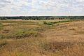 Около Марьевки - panoramio (1).jpg