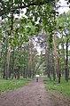 Парк партизанської слави (Київ) 08.jpg