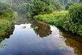 Пойма реки Сходня вблизи Куркино. 04.jpg