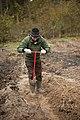Посадка лесных культур с использованием меча Колесова.jpg