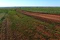 Проселок в северо-западном направлении - panoramio.jpg