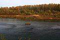 Река Урал - panoramio (8).jpg